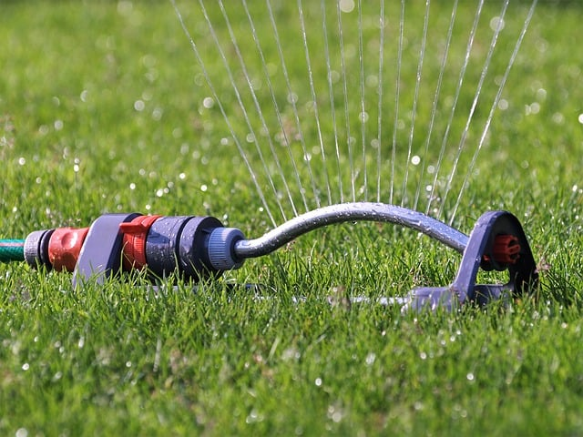 Summer Bucket List Ideas for Families - Sprinklers