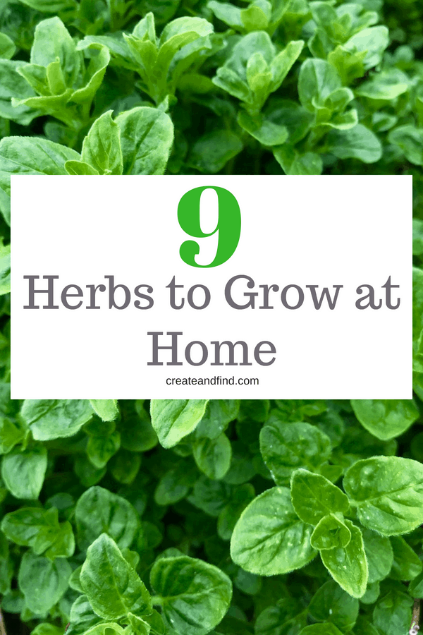 Growing Herbs - Tips to get your own herb garden started.